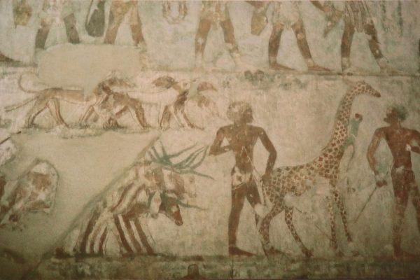 Windhunde mit Giraffe und Ägyptern