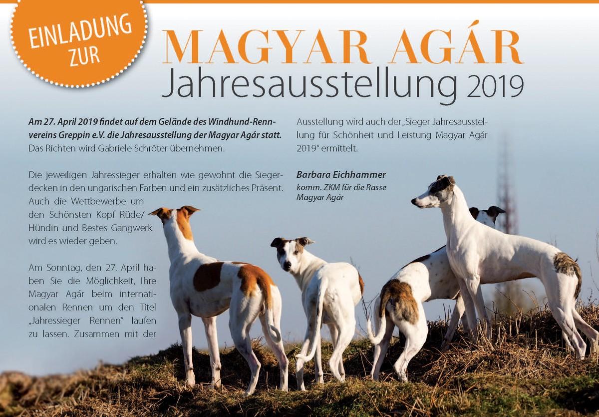 Magyar Agár Einladung Jahresausstellung 2019
